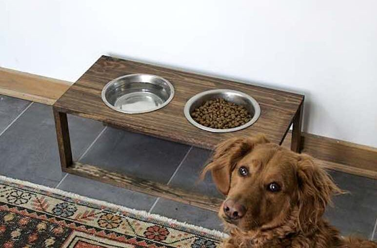 Build a Modern Dog Food Holder with free plans.