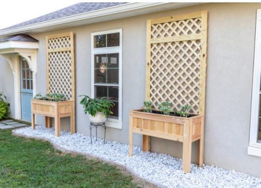 Build a Raised Planter Box With Trellis using free plans.