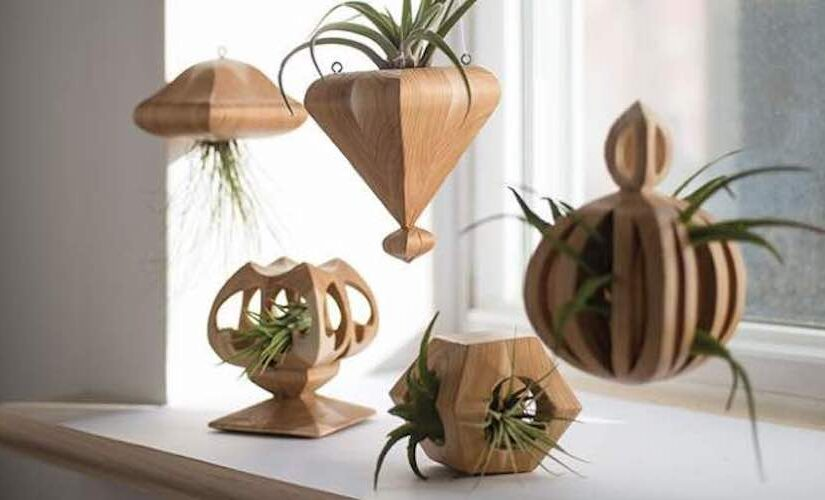 Wooden Air Plant Holder