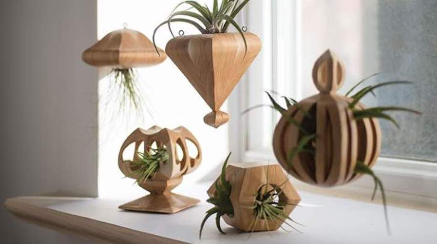Free plans to build a Wooden Air Plant Holder.