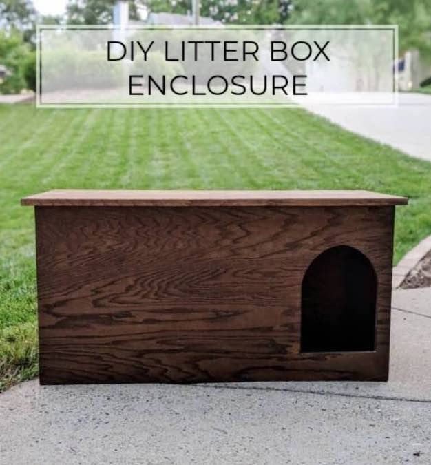 Free plans to build a Litter Box Enclosure using plywood.